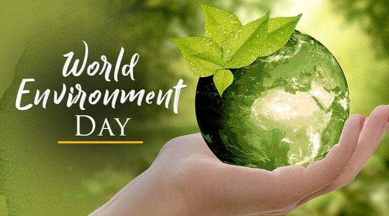 Mworld Webtech Private Limited  Celebrating World Environment Day 5,June 2019